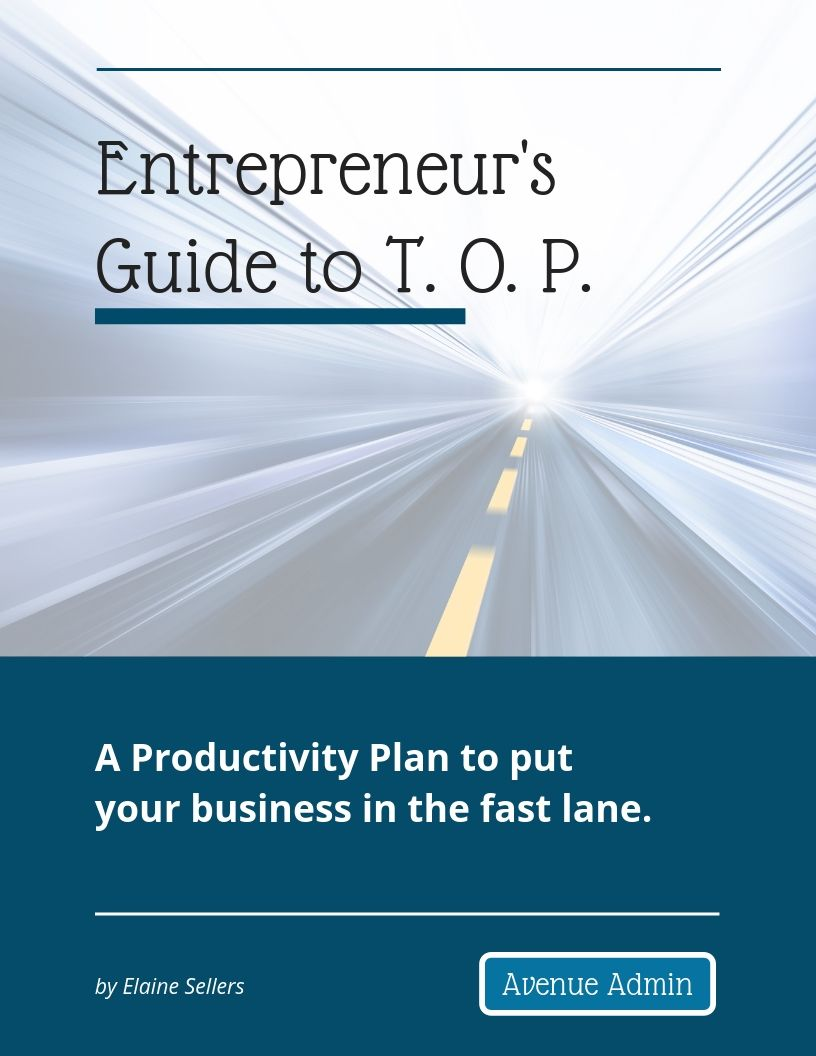 Entrepreneur's Guide to T.O.P.